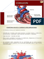 sistema cardiaco.pptx