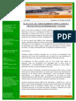 El-Silicio-como-fertilizante-y-fungicida.pdf