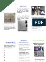 Folleto Eco-Colegio Español