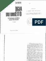 Direito como fato social.pdf