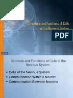 Struktur Dan Fungsi Neuron Part 1