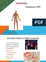 sistemacirculatorio - PROYECTAR.