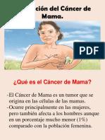 ROTAFOLIO Prevención Del Cáncer de Mama