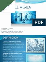 Bioqumica Agua Final