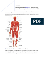 Systems in human body.docx