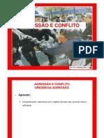 AGRESSAO E CONFLITO [Modo de Compatibilidade]-.pptx