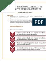 Vdocuments.mx Practica 3 Determinacion de Actividad de Succinato Deshidrogenasa en Escherichia