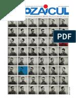 Mozaicul-01-ianuarie-2019-web.pdf