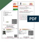 My Aadhaar.pdf