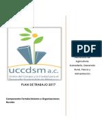 El Plan de Trabajo a Mediano y Largo Plazo organizate