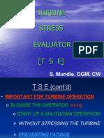 Turbine Stress Evaluator
