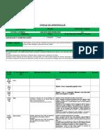 Formato de Planificacion (Unidad) (1)