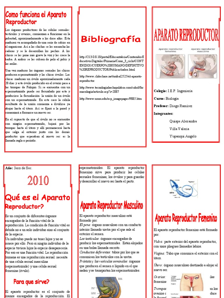 triptico - aparto reproductor