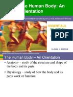 Ch 1 - Human Body Orientation.ppt