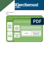 Gestion Ambiental Actividad 1 M1_modelo