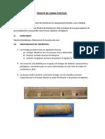 6.-CAP-3-INFORME-DE-CARGA-PUNTUAL-ROCAS-1.docx