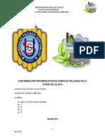 Informe de Contaminacion Por Pollerias en Juliaca