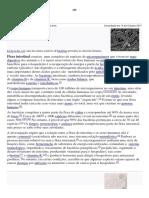 Ficha Flora Intestinal 3