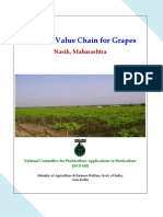 7-Value chain for Grapes crop in Nasik district of Maharashtra.pdf