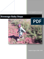 Knowage_Baby_Steps.pdf