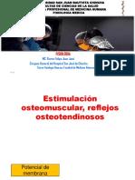 Estimulacion osteomuscular_20190808131832