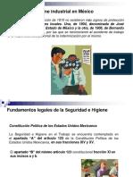 higiene y seguridad en mexico.pdf