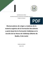 TFM_Gisela Leoz Munte.pdf