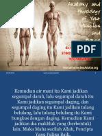 Anatomi_fisiologi_muskuloskeletal_ppt (1).ppt