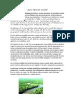 ¿Qué Es El Desarrollo Sostenible