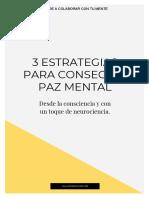 LM 3 Estrategias Para Conseguir Paz Mental