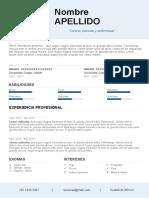58-curriculum-vitae-hecho (1).docx