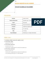 Cc1. Protocolo g.salivares