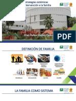 Intervencion Sistemica de La Familia