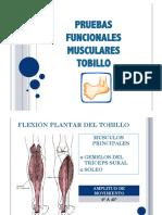 158376191-Tobillo-prueba-manual-muscular.pdf