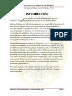 380399520 Informe de Fisico y Quimico FIGMM