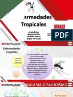 Enfermedades Tropicales-Saneamiento [Autoguardado]