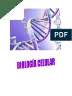 Biologia Celular Dibujo