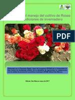 manualparaelmanejoderosas-170629181613.pdf