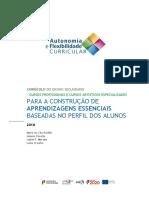 Aprendizagens essenciais  - cursos Profissionais.pdf