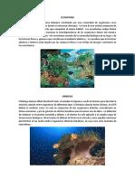Ecosistema, Simbiosis, Mutualismo, Comensalismo, Parasitismo, Erocion, Deforestacion, 5 Mitiligias, Leyenda de La Siguanaba