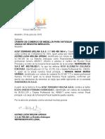 Carta Cambio Revisor Fiscal