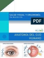 Salud Visual y Ergonomía