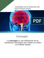 Presentación1 Meningitis