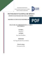 TRANSPORTE DE CADENA ELECTRONICA