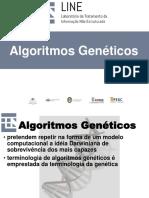 IA MBA 201907 0200 Algoritmos Geneticos