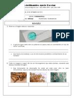 Ciências - 4º ano - fungos, protozoários, vírus