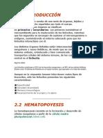 hemapotoyesis