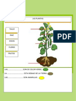 CLASE COM PLANTAS 1ª GRADO.docx