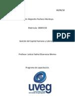 Pacheco_Martin_Capacitacion.docx