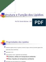 Estrutura e Funcao Dos Lipidios